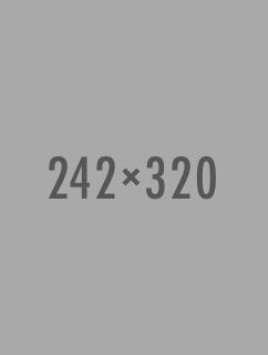 Banner 28